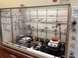 A chemical synthesis fume hood